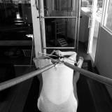 clínica de pilates para coluna com escoliose